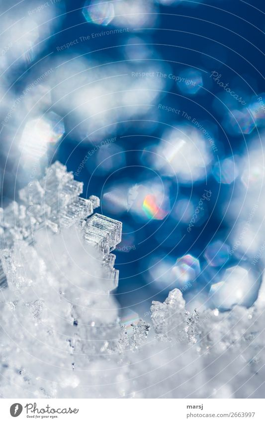 Crystal with colorful reflections Ice Frost Ice crystal Illuminate Exceptional Blue Prismatic colors Uniqueness Transience Enchanting Dream world Winter