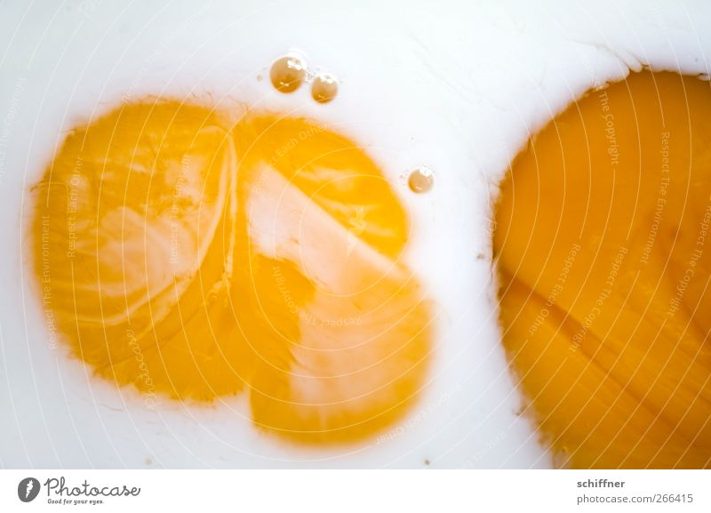 White Yellow Background picture Food Nutrition Round Egg Yolk Structures and shapes Fried egg sunny-side up