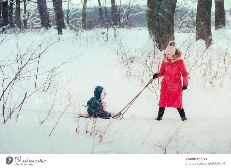 Woman pulling sled with her little daughter on wintery day Lifestyle Joy Happy Winter Snow Winter vacation Human being Child Baby Toddler Girl Young woman