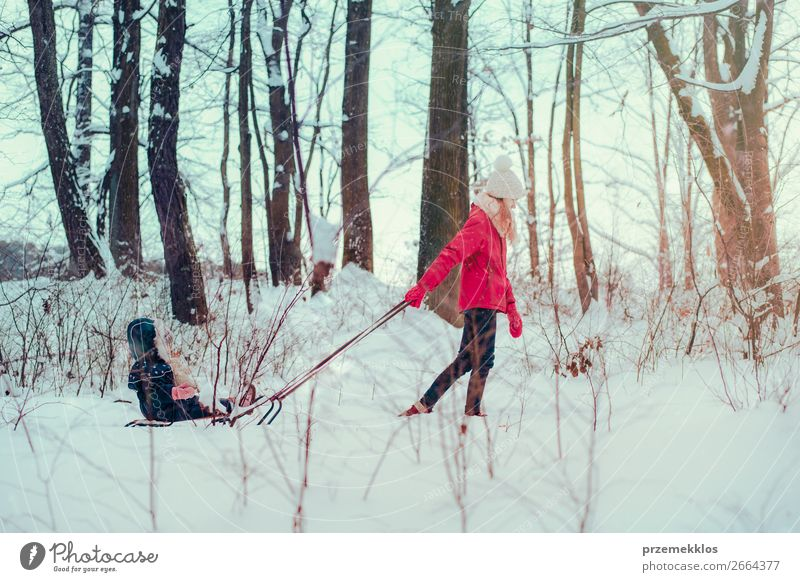 Teenage girl pulling sled with her little sister through forest Lifestyle Joy Happy Winter Snow Winter vacation Human being Child Toddler Girl Young woman