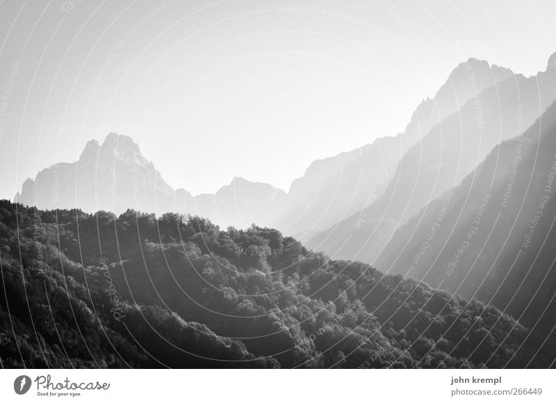 sublime Environment Forest Hill Alps Mountain Peak Carnic Alps Illuminate Esthetic Threat Gigantic Tall Optimism Power Might Brave Determination Calm Honest