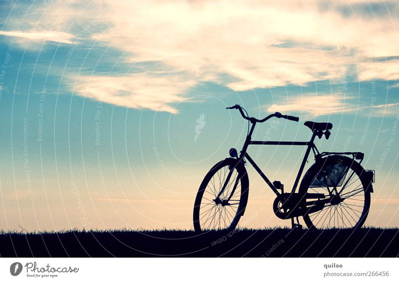 freedom Vacation & Travel Summer vacation Island Cycling Bicycle Landscape Air Sky Clouds Beach Dike Traffic infrastructure Lanes & trails Movement Driving