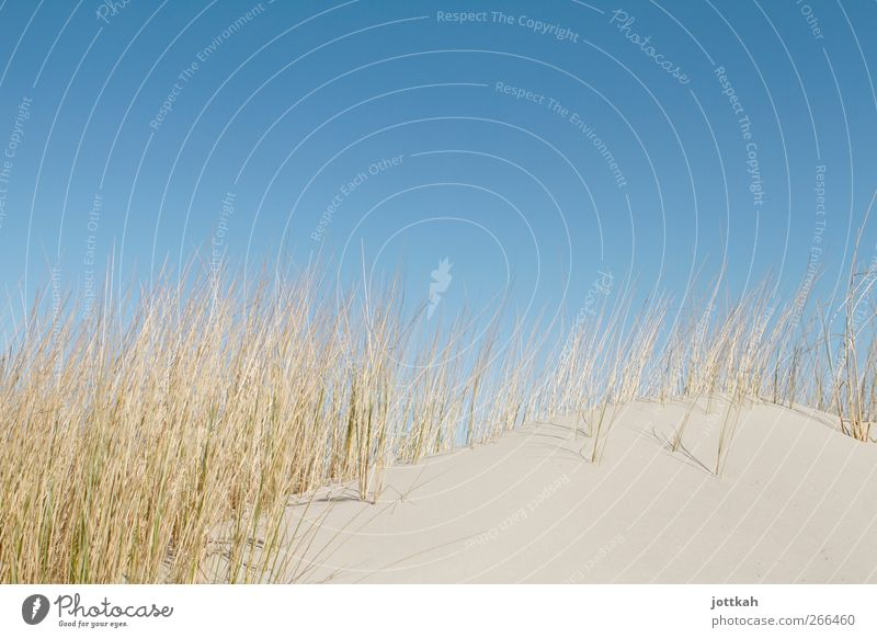 Sky Nature Blue Vacation & Travel Sun Ocean Summer Beach Calm Relaxation Warmth Sand Germany Island Empty Clean