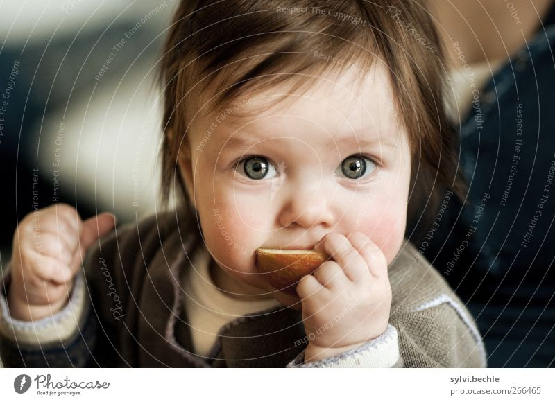 Human being Child Girl Nutrition Feminine Life Food Eating Healthy Infancy Fruit Baby Cute Curiosity Apple To hold on