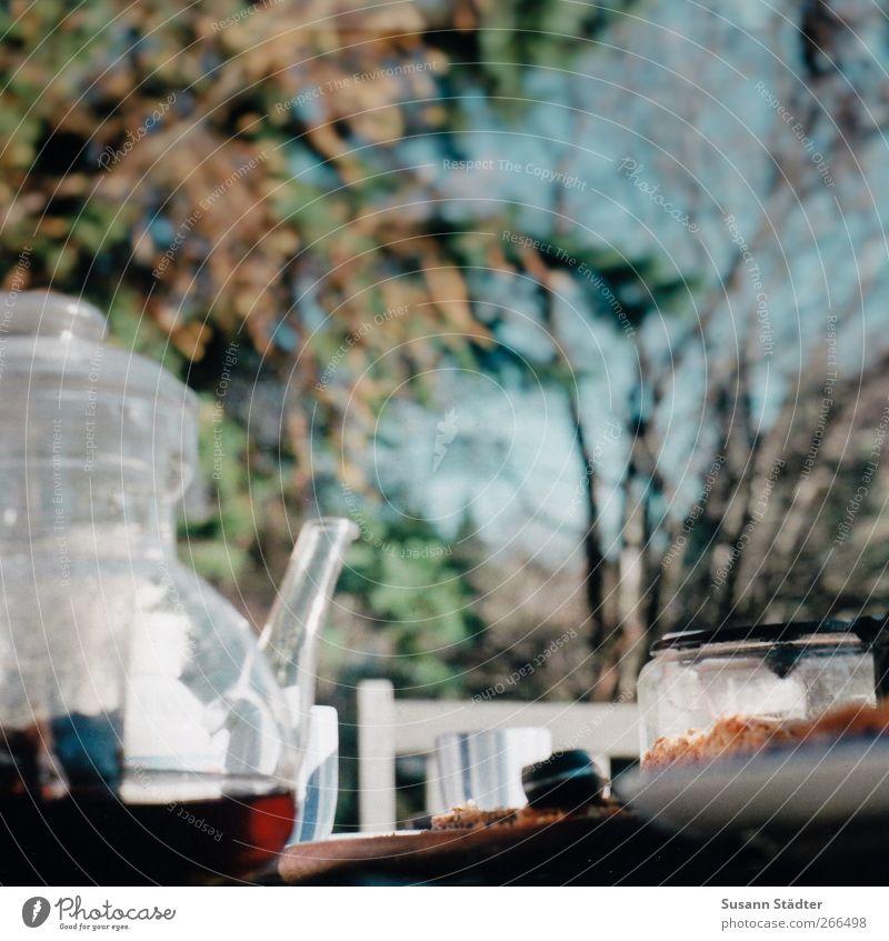 Grandma's apple pie Food Nutrition Picnic Beverage Hot drink Tea Fragrance Teapot Table Tea strainer Black tea Colour photo Exterior shot Close-up Deserted