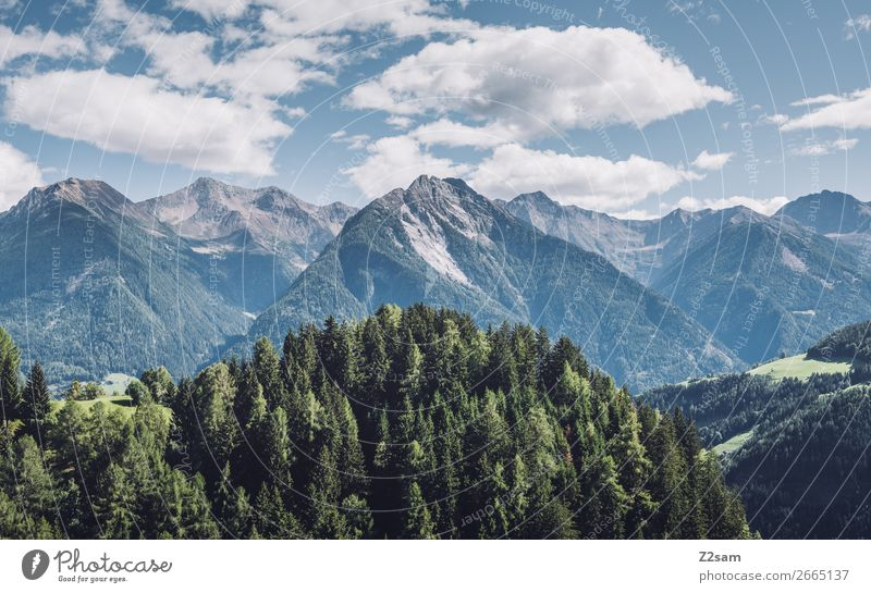 South Tyrolean Alps Mountain Hiking Environment Nature Landscape Sky Clouds Summer Beautiful weather Forest Peak Gigantic Sustainability Natural Blue Green