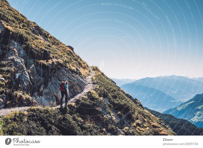 Ascent to Hirzer in South Tyrol | Alpine crossing E5 Mountain Hiking Climbing Mountaineering Nature Landscape Cloudless sky Summer Beautiful weather Alps Sports