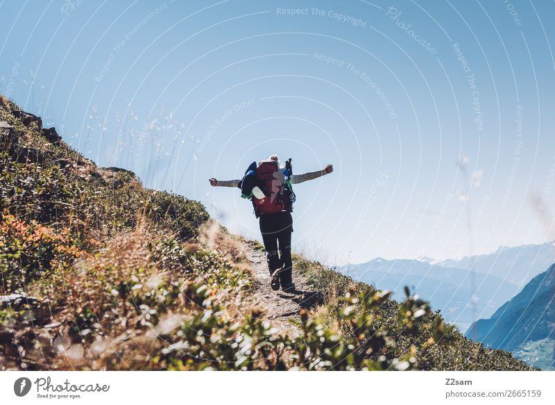 Vacation & Travel Nature Youth (Young adults) Young woman Summer Landscape Mountain 18 - 30 years Adults Sports Happy Hiking Happiness Adventure