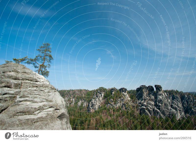 Sky Nature Blue Tree Calm Landscape Mountain Stone Power Rock Tall Trip Tourism Hope Uniqueness Beautiful weather