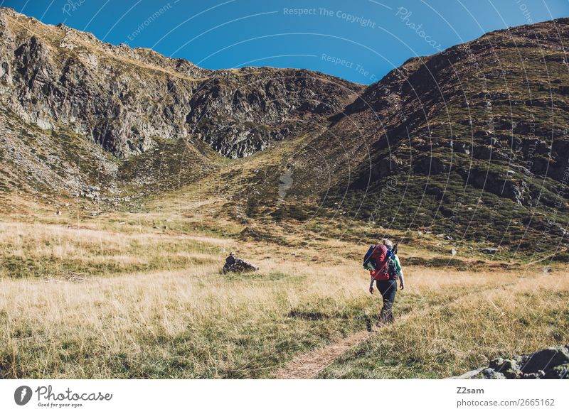 Ascent to Hirzer in South Tyrol | Alpine crossing E5 Leisure and hobbies Vacation & Travel Mountain Hiking Climbing Mountaineering Young woman