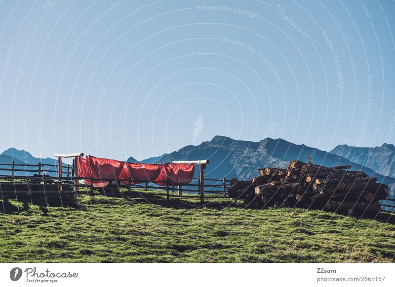 clothesline at the top of Hirzer Mountain Hiking Nature Landscape Cloudless sky Summer Beautiful weather Meadow Peak Tall Sustainability Natural Blue Green