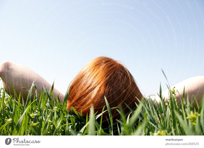 Red haired woman laying in grass looking up Relaxation Sun Human being Young woman Youth (Young adults) Woman Adults 1 18 - 30 years Sky Grass Red-haired Tall