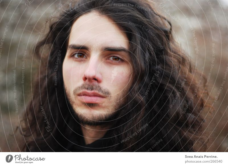 plain. Masculine Hair and hairstyles Face 1 Human being 18 - 30 years Youth (Young adults) Adults Nature Autumn Brunette Long-haired Curl Observe Natural