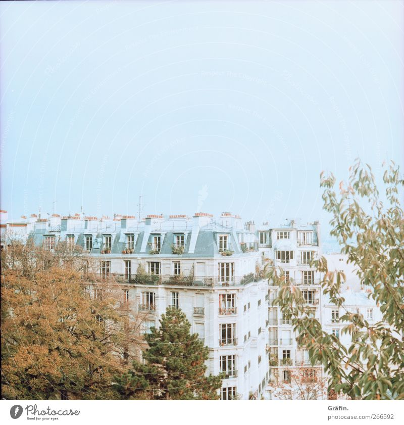Above the roofs of Paris Vantage point Sky Residential area Tree Window Architecture Colour photo Blue Green Brown Far-off places