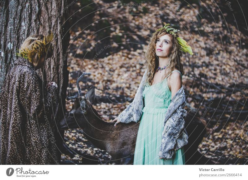 Two girls and a deer in the woods Woman Human being Nature Youth (Young adults) Young woman Plant Beautiful Landscape Animal Joy Face Lifestyle Adults