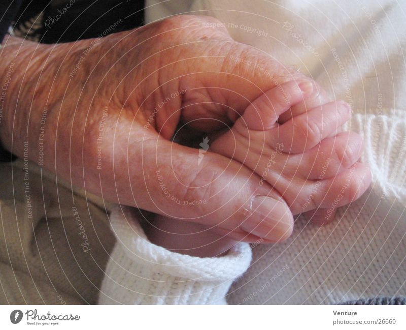 Human being Man Hand Senior citizen Baby Fingers Contact Trust Catch Touch To hold on Difference Generation Converse