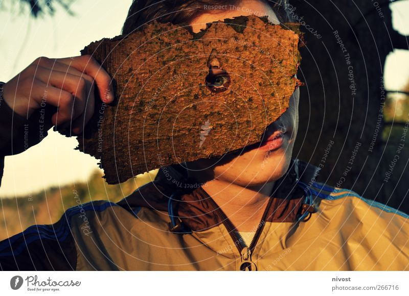 knothole view Human being Masculine Young man Youth (Young adults) Man Adults Eyes 1 18 - 30 years Nature Tree Protective clothing Mask Short-haired Wood