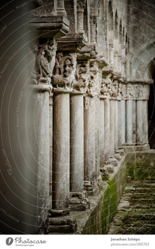 portico Spain Gray Holy Building Architecture Column Colonnades Moss Ornamental Stone Monastery Cathedral Manmade structures Aligning Old Derelict Masonry Calm