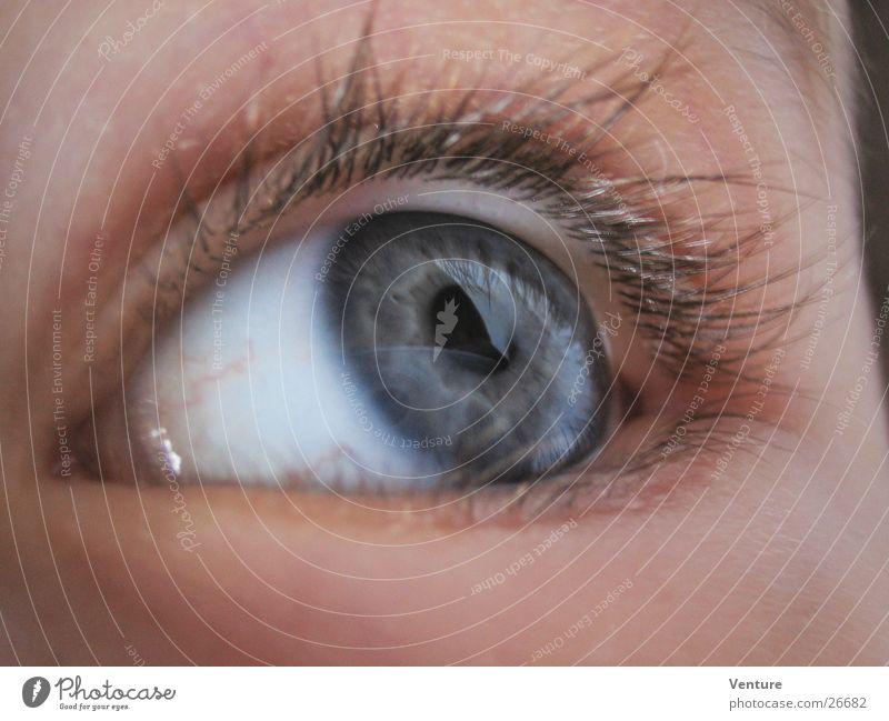 Human being Eyes Eyelash Pupil Iris