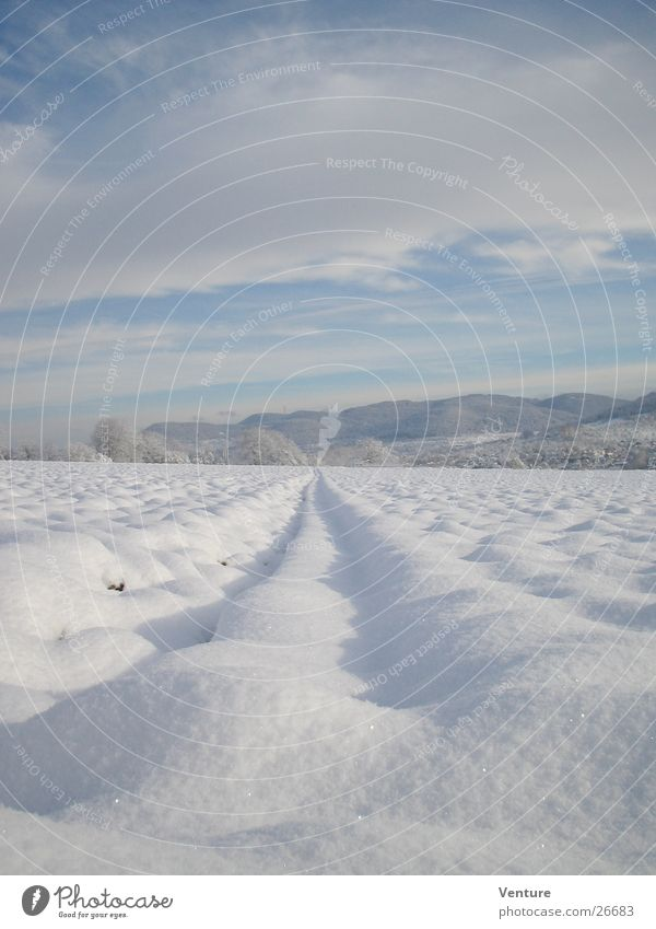 Sky Winter Clouds Loneliness Far-off places Cold Mountain Air Ice Field Perspective Tracks Hill Frozen Freeze December