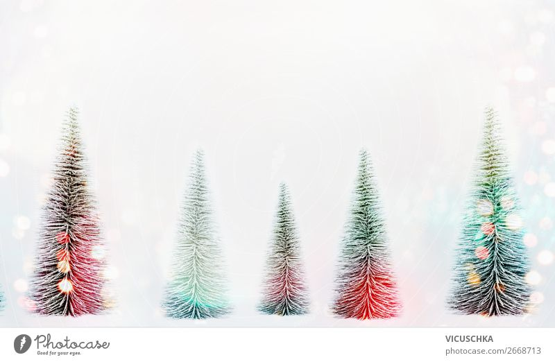 Fir tree forest with bokeh Style Design Winter Decoration Feasts & Celebrations Christmas & Advent Nature Snow Forest Flag Hip & trendy Background picture