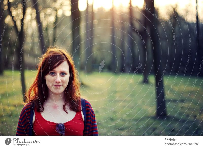 in the hair in the evening. Human being Feminine Young woman Youth (Young adults) Woman Adults 1 18 - 30 years Tree Park Forest Smiling Dusk Nature Red-haired