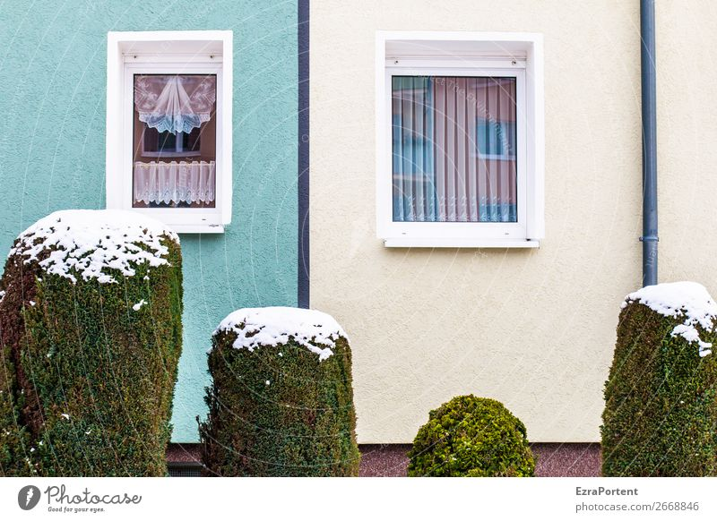 Plant Town Green White House (Residential Structure) Winter Window Architecture Wall (building) Cold Snow Building Wall (barrier) Facade Line Multiple