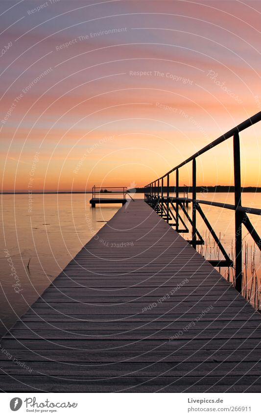 Sky Nature Water Plant Beach Winter Yellow Coast Lake Pink Beautiful weather Lakeside