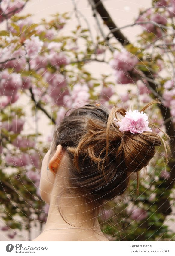 a sweet season Hair and hairstyles Feminine Young woman Youth (Young adults) 1 Human being Plant Spring Flower Blossom Brunette Long-haired Braids Simple