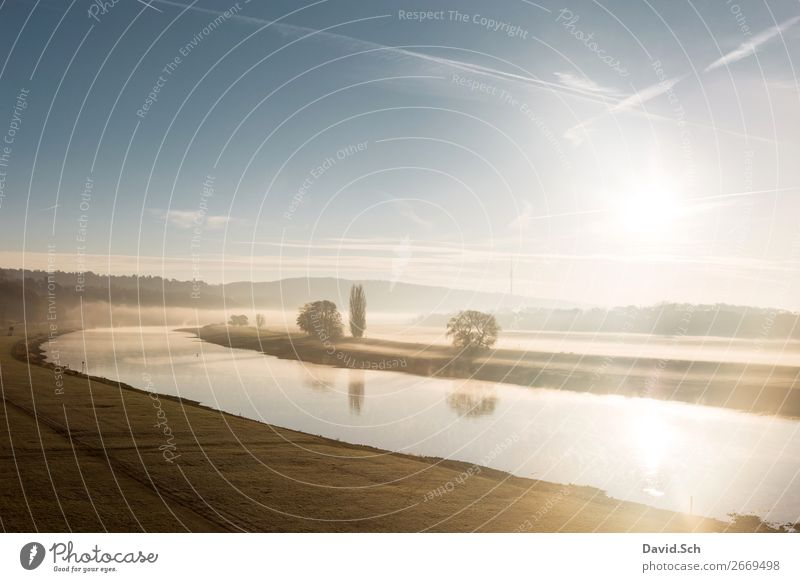 Foggy sunrise in the Elbe Valley in Dresden Environment Landscape Sky Sunrise Sunset Autumn Tree Grass Meadow River bank Manmade landscape Esthetic Beautiful