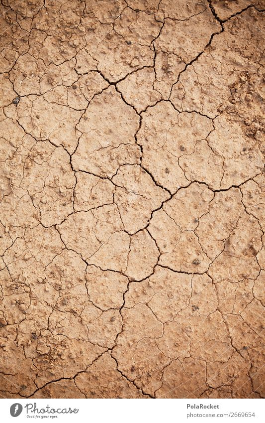 #AS# Earth crack Environment Nature Landscape Esthetic Drought Desert Dry Arid region Dry valley Dry farming desertification Crack & Rip & Tear Climate change