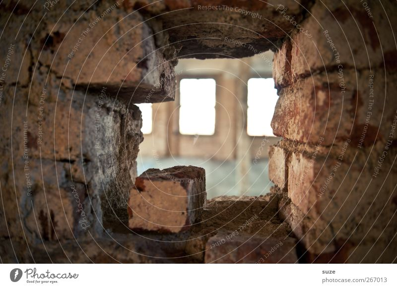 Eyes through and through Interior design Room Building Wall (barrier) Wall (building) Window Stone Brick Old Dirty Broken Decline Past Transience Shaft of light