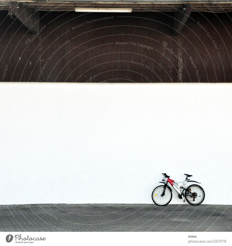 4eyes | Rennstall Bicycle Manmade structures Building Hall Wall (barrier) Wall (building) Facade Stand Sharp-edged Bright Modern Motive Roadworthy Colour photo