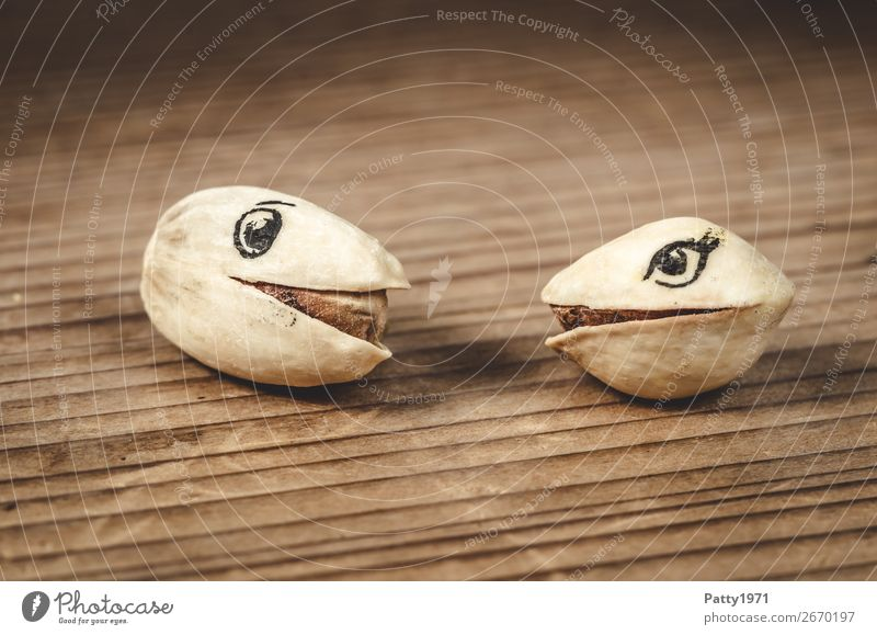 flirt Food Pistachio Rutting season Smiling Looking Funny Brown Emotions Happy Sympathy Friendship Together Love Infatuation Romance Relationship Love affair