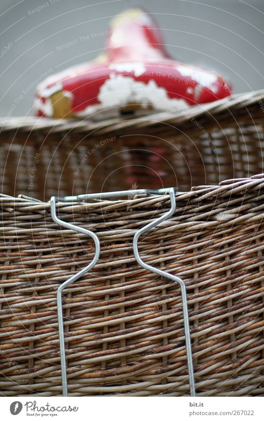 bicycle basket Athletic Fitness Means of transport Kitsch Odds and ends Stand Old Simple Broken Brown Red Modest Thrifty Poverty Bicycle Bicycle saddle Basket