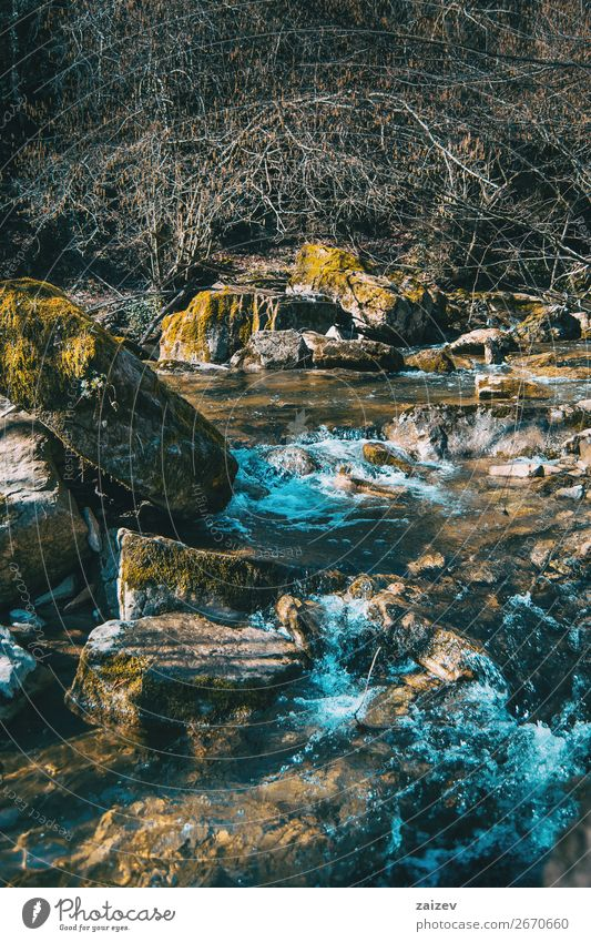 A wild river flowing through large rocks with moss Beautiful Vacation & Travel Tourism Adventure Waves Winter Mountain Hiking Environment Nature Landscape