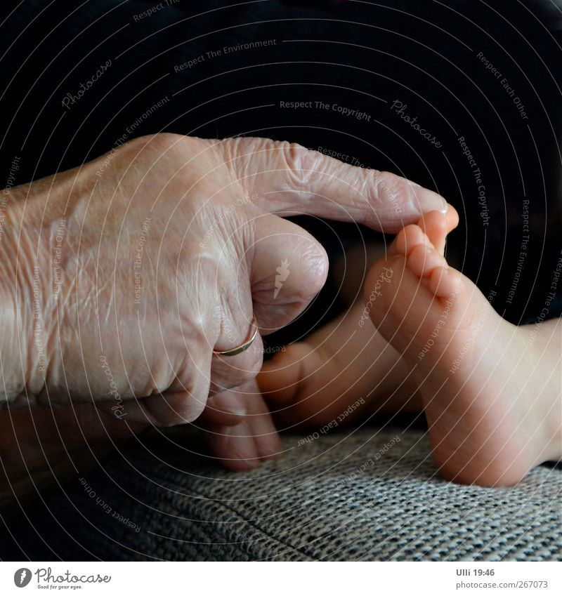 Hand (86) touches foot (1), i.e. a picture with hand and foot. Human being Baby Male senior Man Family & Relations Senior citizen Fingers Feet 2 1 - 3 years