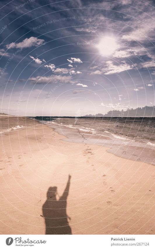 Human being Sky Man Nature Plant Sun Summer Ocean Beach Loneliness Clouds Adults Environment Landscape Coast Sand