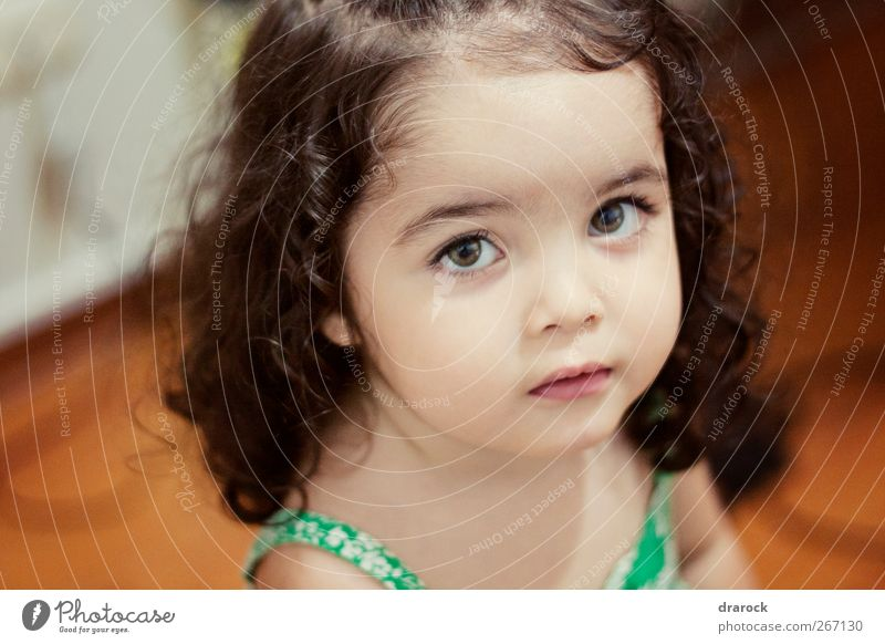 Sparkly eyes Human being Child Beautiful Girl Calm Face Feminine Room Infancy Cute Curiosity Pure Toddler Innocent Curly hair 1 - 3 years