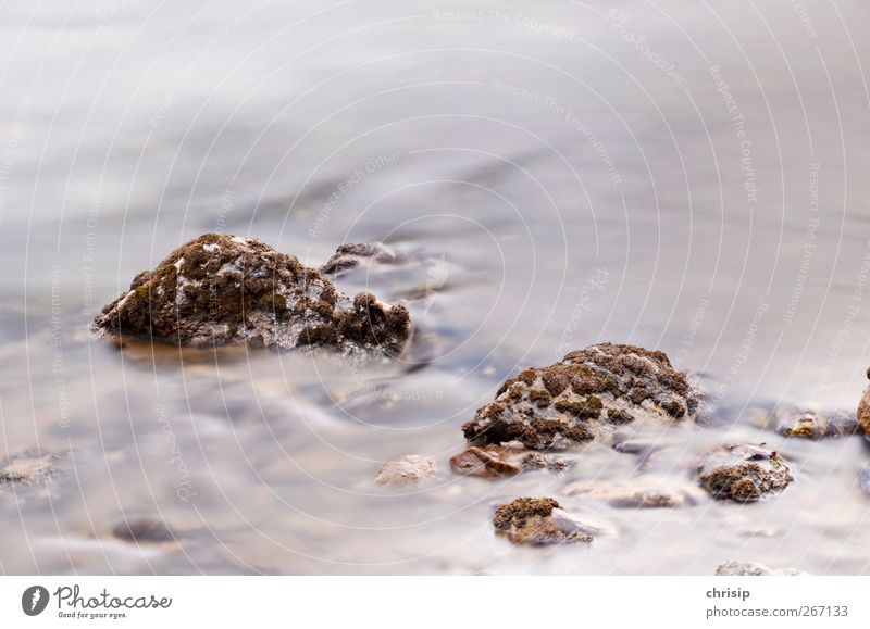 Stones in water mist Environment Nature Water Moss Waves River bank Brook Fluid Fresh Cold Refreshment Source Drinking water Natural Flow Colour photo