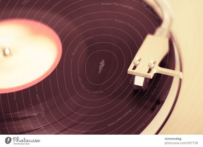 Old Emotions Music Moody Retro Listening To enjoy Rotate Pick-up head Record Musician Quality Night life Pop music Rock'n'Roll Record player