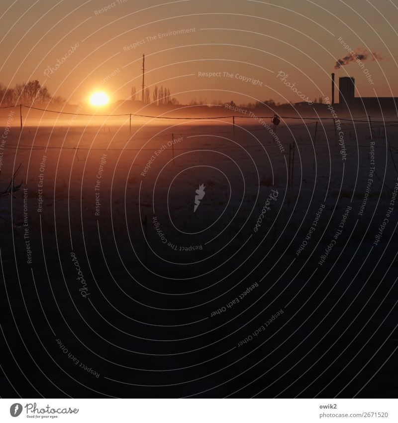 last glimpse Environment Nature Landscape Cloudless sky Horizon Sun Winter Meadow Outskirts Factory Thermal power station Chimney Illuminate Far-off places Calm