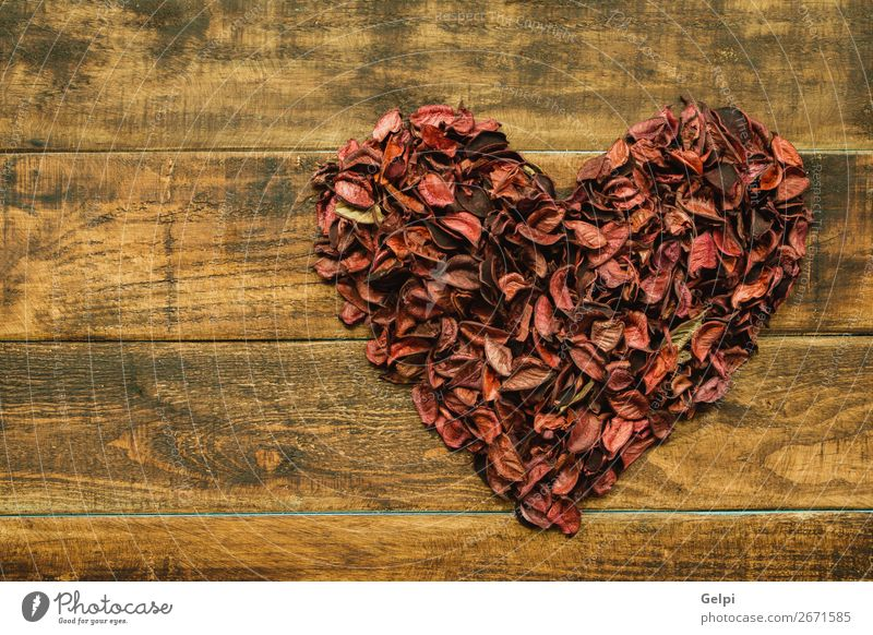 Beautiful heart maked with dry petals Nature Plant Red Flower Wood Love Blossom Feasts & Celebrations Decoration Heart Gift Romance Wedding