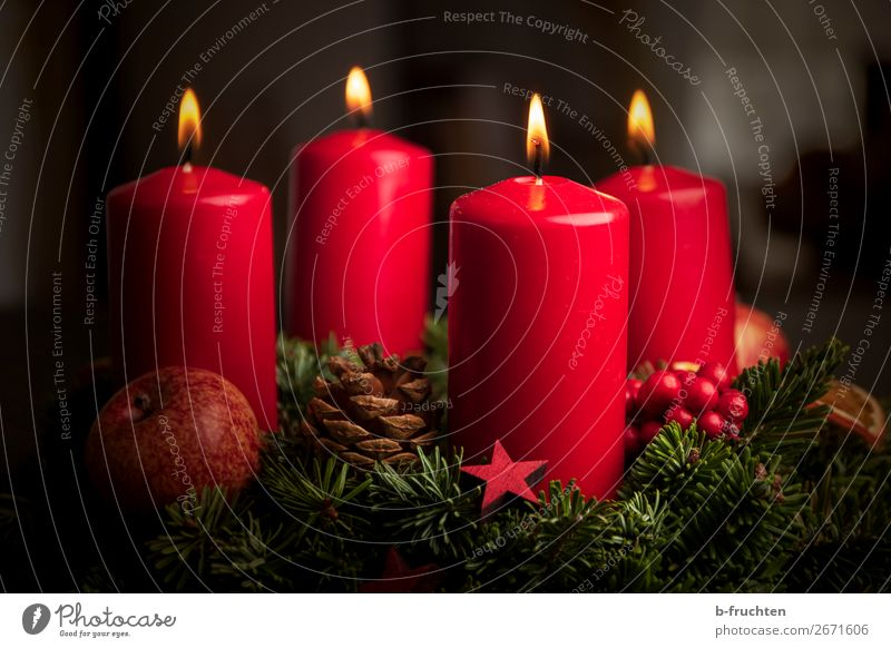 Advent wreath Christmas & Advent Plant Sign Illuminate Wait Red Moody Safety (feeling of) Hope Belief Peace Religion and faith Love Christmas wreath 4 Candle