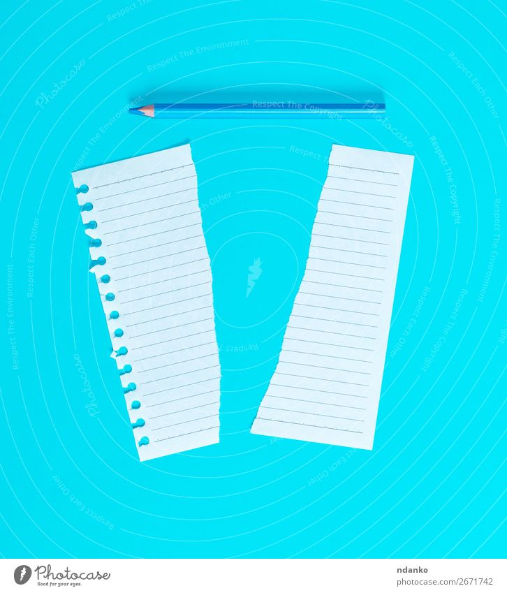 torn in half white blank sheet in line School Office Business Paper Piece of paper Pen Wood Write Blue White Idea plan background Blank Conceptual design copy