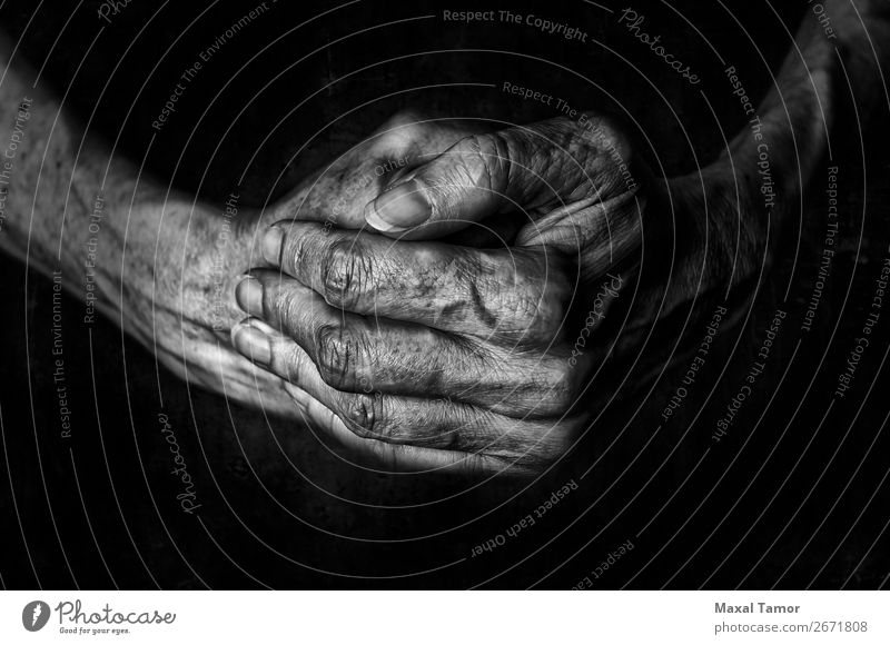 Woman's hands praying Human being Old Beautiful Hand Dark Black Adults Religion and faith Natural Power Skin Arm Fingers Strong Prayer