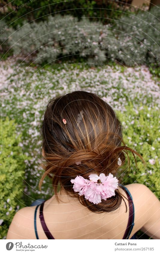 Human being Nature Youth (Young adults) Beautiful Plant Leaf Environment Feminine Spring Grass Hair and hairstyles Blossom Back Pink Young woman Bushes