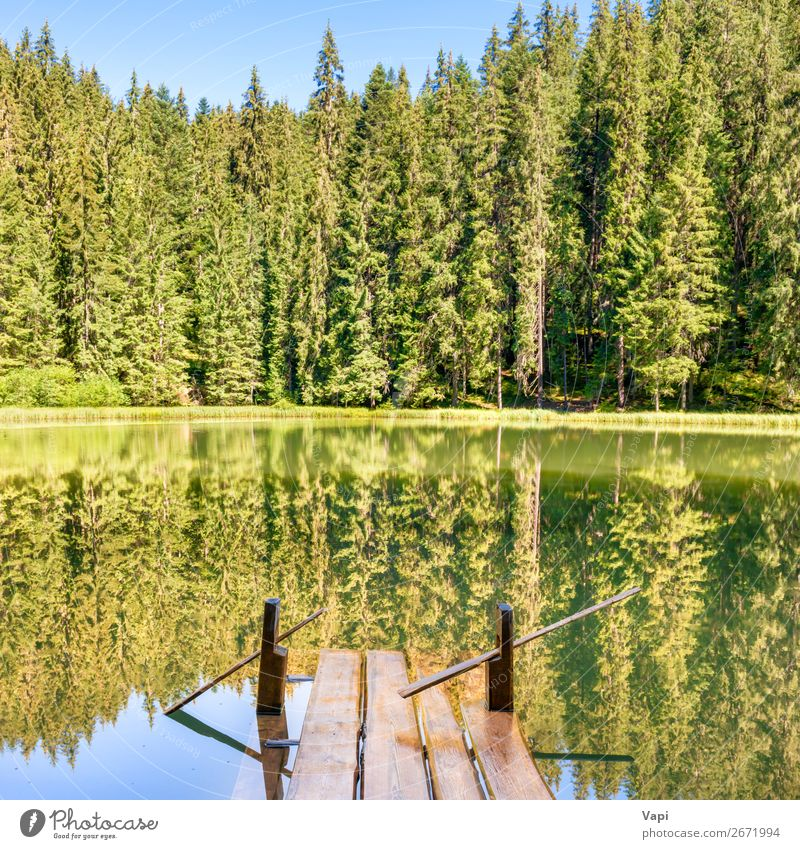 Forest lake in the mountains Sky Vacation & Travel Nature Summer Plant Blue Beautiful Green Water White Landscape Sun Tree Relaxation Mountain