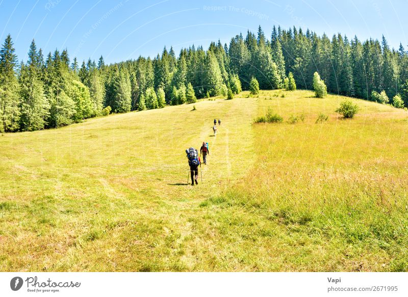 Group of hiking people at mountains Woman Human being Vacation & Travel Nature Youth (Young adults) Man Young woman Summer Plant Blue Green Young man White