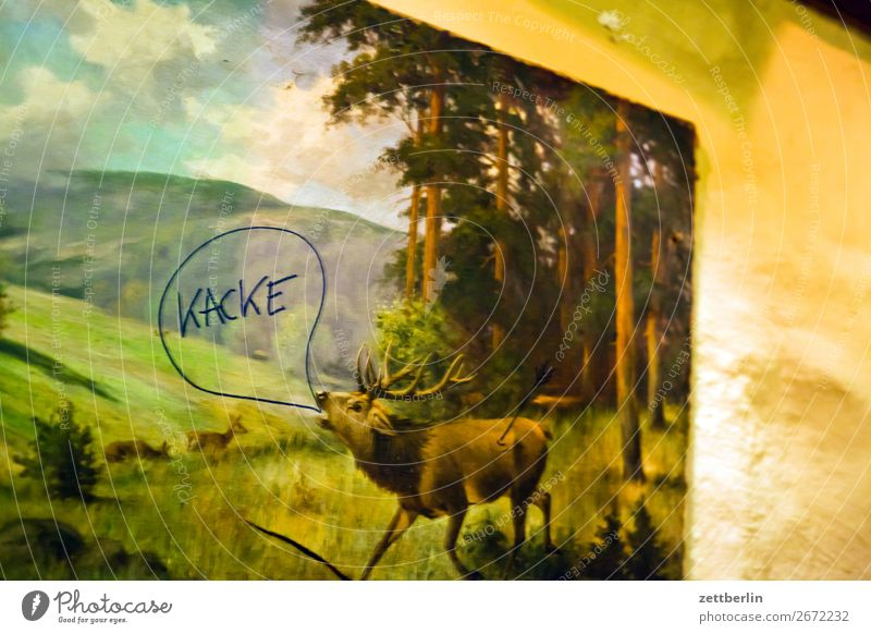 "The deer says ""poop"". Deer Animal Wild animal Forest Edge of the forest Landscape roaring stag Pipe Rutting season Scream Image Kitsch"